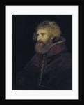 Pope Paviarius by