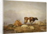 Landscape and Cattle by Thomas Sidney Cooper