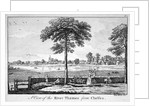 View of the River Thames from Chelsea, London by