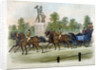 Queen Victoria and Prince Albert taking air in Hyde Park, London by Anonymous