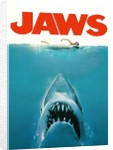 Jaws Movie Poster Original Artwork by Revolution Posters