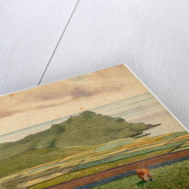 Calf of Man From Cregneash by Robert Evans Creer