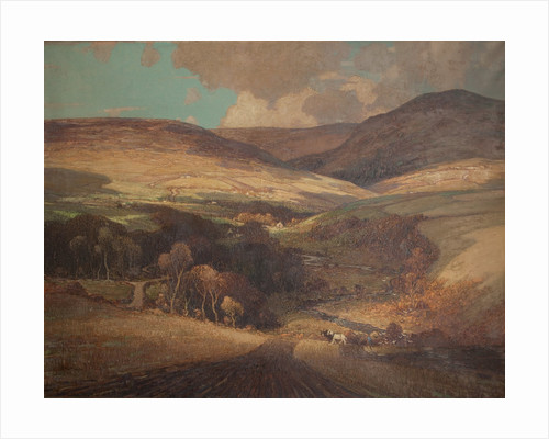Baldwin Valley - light and shadow by William Hoggatt