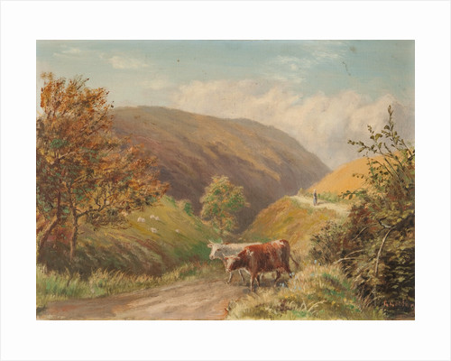 Looking Down Glen Rushen, Patrick by George Goodwin