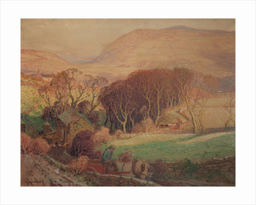 Frosty morning in a Manx Glen by William Hoggatt