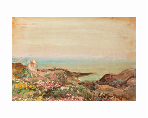 Sea pinks at Derbyhaven by William Hoggatt