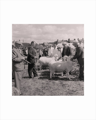 Ramsey Agricultural Show by Manx Press Pictures