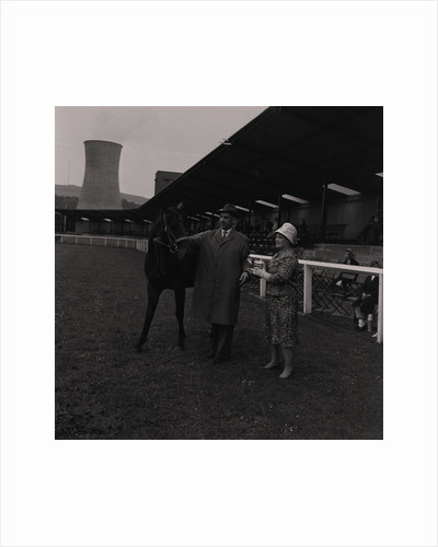 Light Horse Society Summer Show at Bowl by Manx Press Pictures