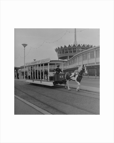 Horse tram opening by Manx Press Pictures