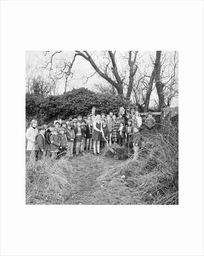 Kewaigue tree planting by Manx Press Pictures