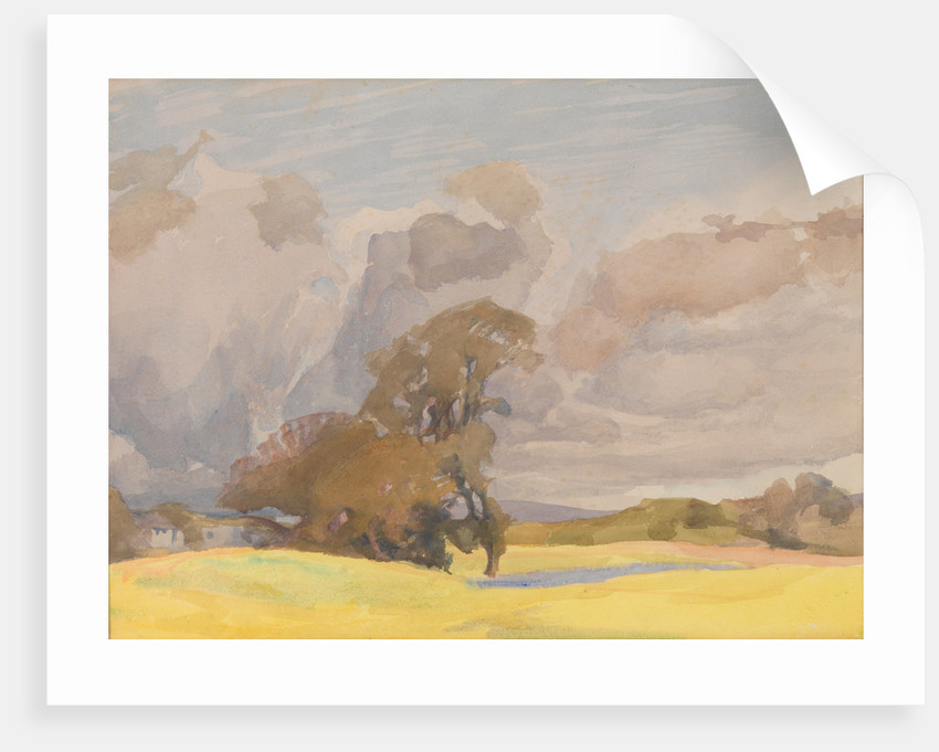 Trees by a Pond by Archibald Knox