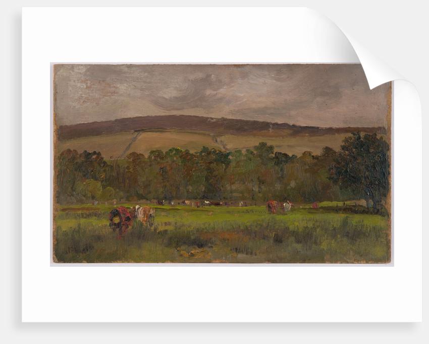 Pastoral landscape by John Miller Nicholson