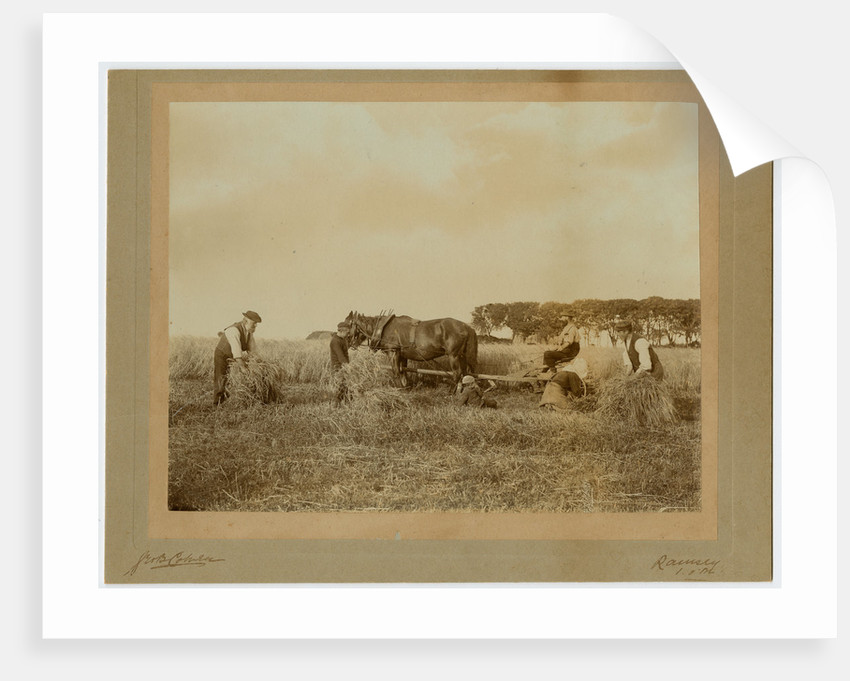 Members of the Christian family of Ballayonaigne, Bride, reaping a field on the farm by George Bellett Cowen