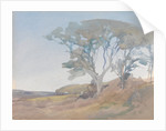Trees against a Clear Blue Sky by Archibald Knox