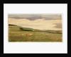 Dalby by Robert Evans Creer