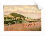 Ballagilley by Robert Evans Creer