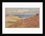 Coastal scene by John Miller Nicholson