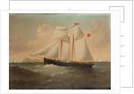 The Schooner 'Snaefell' by William Horde Yorke