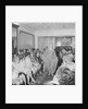 Fashion Show, Port Erin by Manx Press Pictures