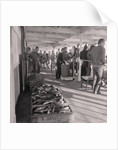 Herring fishing by Manx Press Pictures