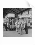 Horse tram centenary celebrations by Manx Press Pictures