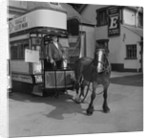 Jack Dugdale, horse tram driver by Manx Press Pictures