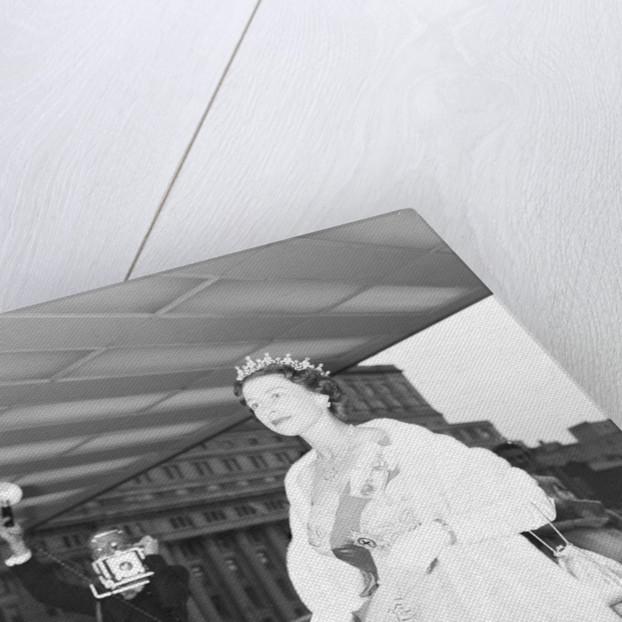 Queen Elizabeth 1959 by Freddie Reed