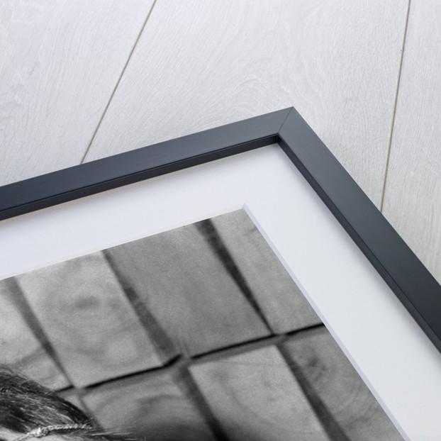 Elizabeth Taylor by Kent Gavin