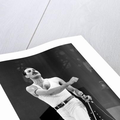 Freddie Mercury by Daily Mirror