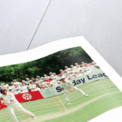 Cricket 1992 by Paul France