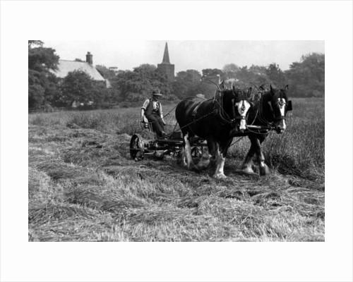 Farming by Staff