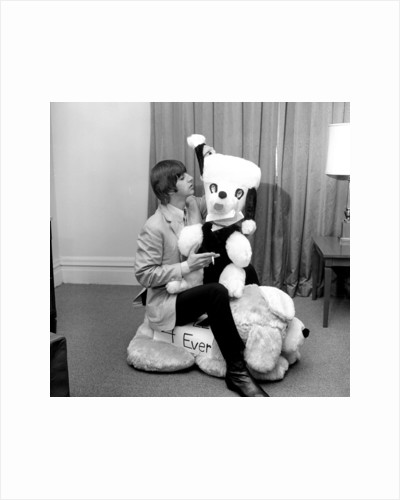 Ringo Starr with a gigantic stuffed toy animal, sent to him by his fans by Unknown