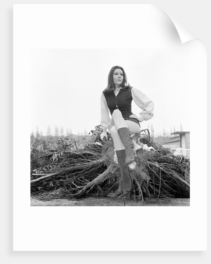 Diana Rigg by Victor Crawshaw