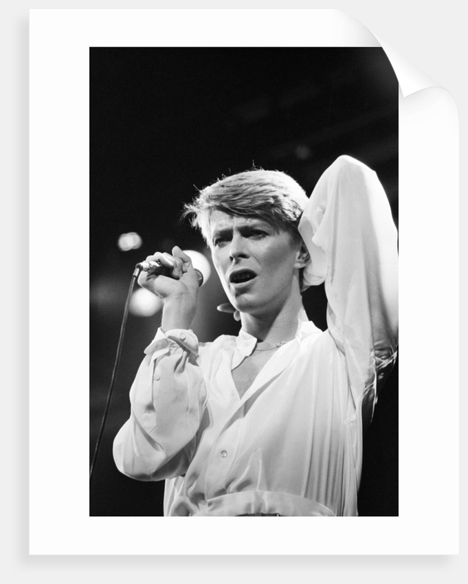 David Bowie 1978 by Allan Olley