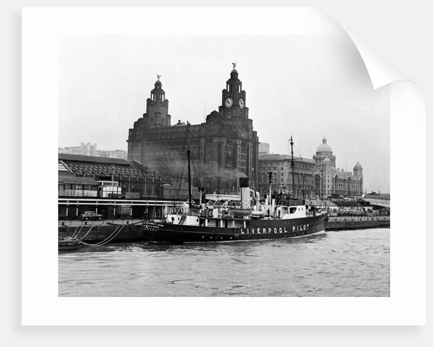 View of Liverpool 1954 by Bela Zola