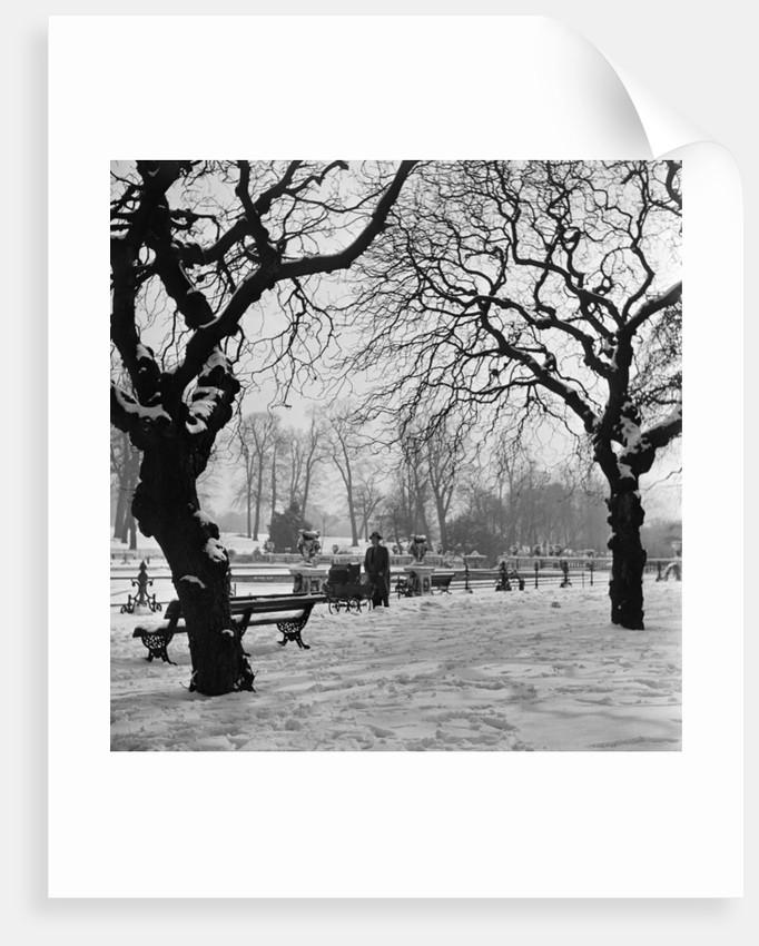 Hyde Park, circa 1953 by Staff