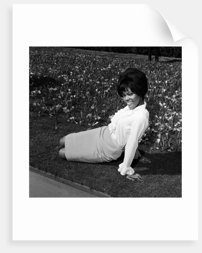 Dionne Warwick, 1965 by Eric Harlow