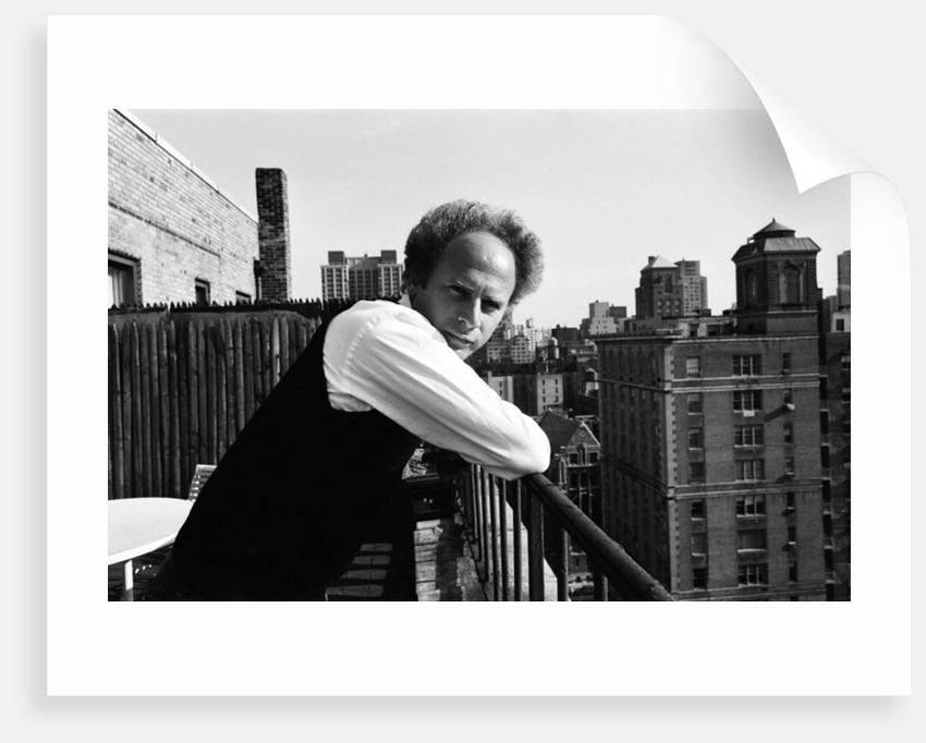Art Garfunkel, 1980 by Michael Brennan