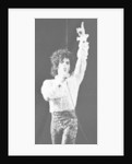 Prince Pop Star by Mike Maloney