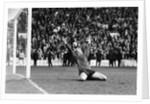 FA Cup Semi Final, Wolverhampton Wanderers v Tottenham Hotspur by Monte Fresco