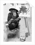 Artist Chimp by Williams