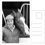 Racehorse Shergar 1981 by Micheal Daines