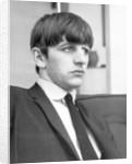 Ringo Starr 1963 by Bela Zola