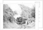 Steam Trains by Reader