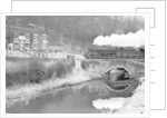 Goods Train 1965 by Birmingham Post and Mail Archive