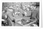 Bethnal Green Wast London Street Pet Market.  23rd May 1946 . by George Greenwell