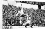 Tottenham Hotspur v Hull City by Mike Maloney