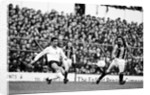 Tottenham Hotspur v Hull City by Mike Maloney