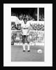 Tottenham Hotspur v Stoke City by Nigel Cairns