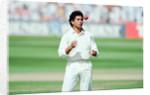 Cricket 1992 by Howard Walker